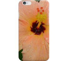 Peach Hibiscus_1 iPhone Case/Skin