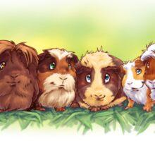 7 Good Luck Guinea Pigs Sticker