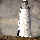 The Light house by julie anne  grattan