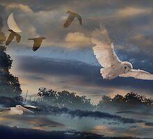 Night Fliers by byronbackyard