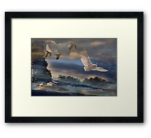 Night Fliers Framed Print