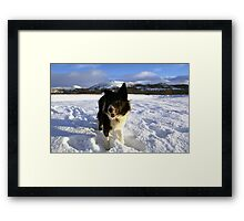 Merry Christmas From Mike and Indy Framed Print