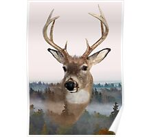 Whitetail Deer Double Exposure Poster