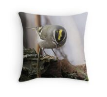 Gold Crowned Kinglet Throw Pillow