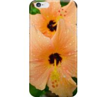 peach hibiscus_2 iPhone Case/Skin