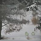 Winter Slumber by Joanne  Bradley