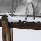 Snow Post by Susan Vinson