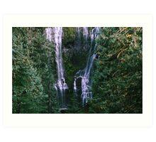 The Forest's Secret - Upper Proxy Falls, OR Art Print
