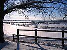 Christmas Eve 2010 by hjaynefoster