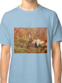 Maine Piebald Bull Moose Classic T-Shirt