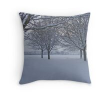 Exeter @ Winter Throw Pillow