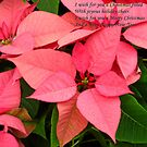 Christmas flowers by Maria1606