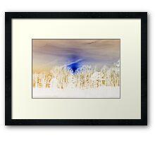 White Splendor Framed Print