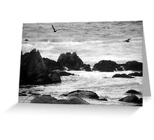 swim in the breeze off the rocky shore Greeting Card