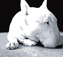 English Bull Terrier Dog, Black and White Pop Art Print by Michael Tompsett