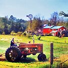 Yardwork at the Old Red Mill by Nadya Johnson