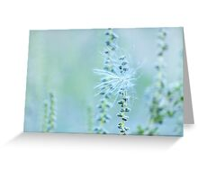 a wisp of a breeze Greeting Card