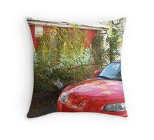 Sports car-wall mural  Throw Pillow