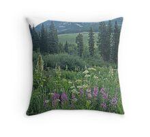 Turquoise Lake mountains, CO Throw Pillow
