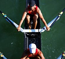 Aerial View of Rowers by Laurie Minor