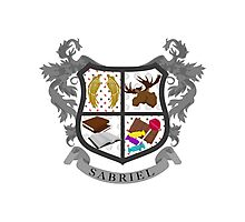 Sabriel coat of arms Photographic Print