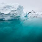Below the surface by David Burren