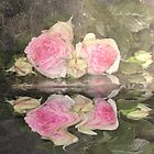 Water Reflection Pink Rose by julie anne  grattan