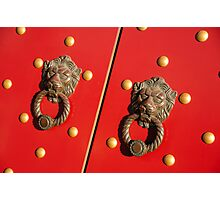 Nice Set of Knockers! Photographic Print
