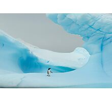 All alone in the ice Photographic Print