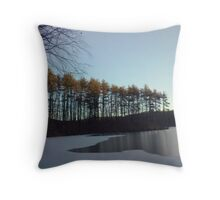 icy dawn Throw Pillow