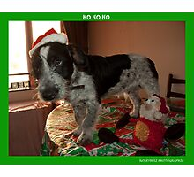 ho ho ho  Photographic Print