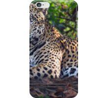 Jaguar chilling out iPhone Case/Skin
