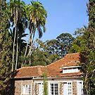 The House of Karen Blixen in Nairobi, KENYA by Atanas NASKO