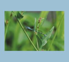 Blue damselfly on green Kids Clothes