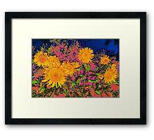 Sunflowers Vibrance  Framed Print
