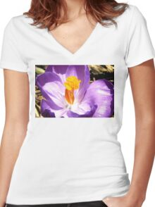 Purple crocus macro Women's Fitted V-Neck T-Shirt
