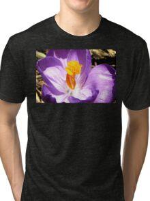 Purple crocus macro Tri-blend T-Shirt