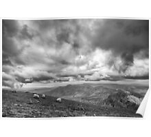 Mourne Mountain Sheep Poster