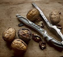 Walnuts by mike2048