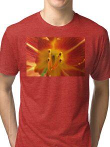 Day lily macro Tri-blend T-Shirt