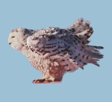 Snowy Owl/Ready for Take-off Kids Tee