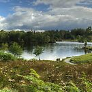 Tarn Hows,Cumbria by Jamie  Green