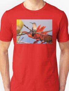 Buffy Hummingbird 1 Unisex T-Shirt