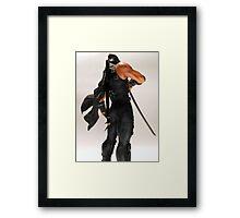 Ryu Hayabusa Framed Print