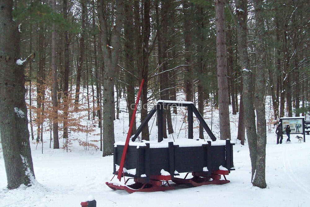 A sprinkler Sled for making Roads the Logging 1900 by cdcantrell