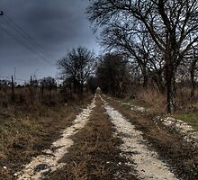 A Rough Rural Road by Terence Russell