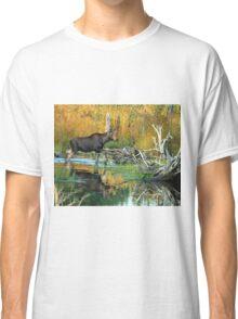 Maine Moose Classic T-Shirt