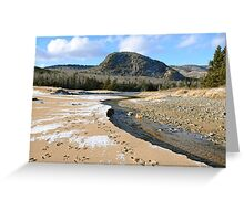 Beehive and Sand Beach, Acadia NP, ME Greeting Card