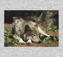 Timber Wolf Chilling Out Kids Tee