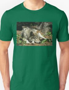 Timber Wolf Chilling Out T-Shirt